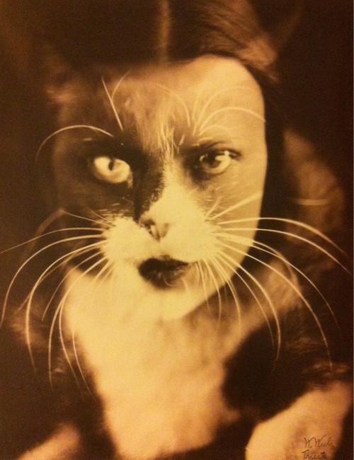 Kot i ja, Wanda Wulz, 1932